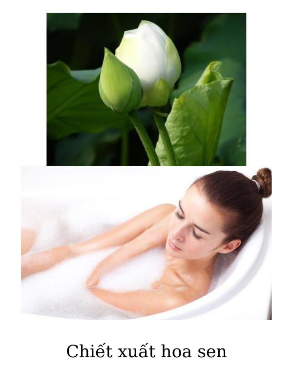 Thành phần chính trong sữa tắm dưỡng da Dr Spiller Magico Shower Gel là hoa sen xanh.