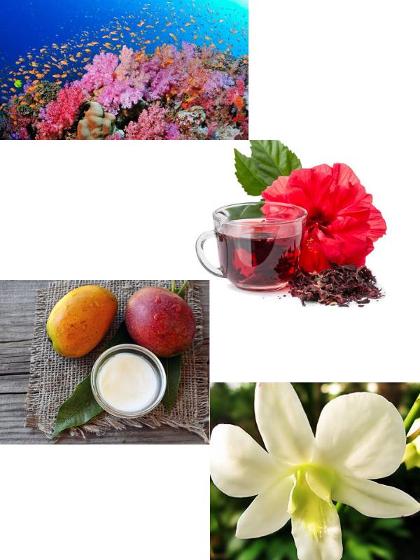 Chiết xuất hoàn toàn từ thực vật, thiên nhiên đảm bảo an toàn cho làn da nhạy cảm nhất.
