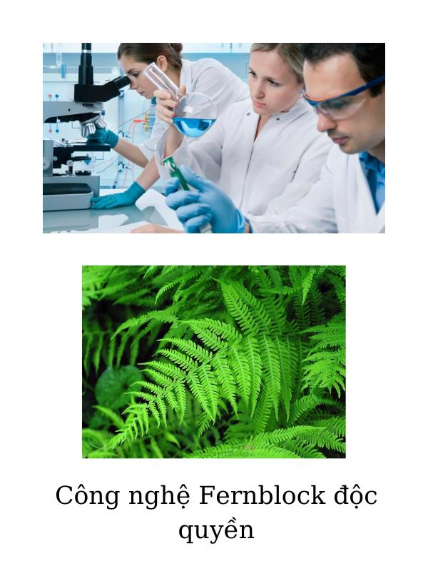 Công nghệ chống nắng Fernblock độc quyền từ chiết xuất cây dương sỉ.